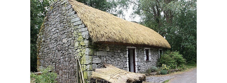How to make thatched roofs